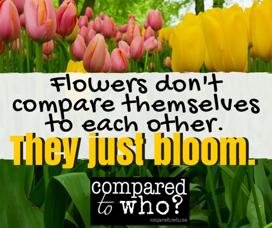 Flowers Don't Compare