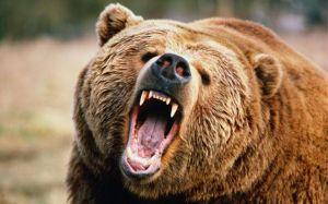 Nasdaq odczuł tąpnięcie. Presja inflacyjna ciąży indeksom Wall Street