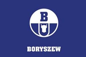 Boryszew dokona odpisów zw. z aktywami Impexmetalu na łączną kwotę 50 mln zł