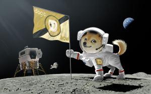 Dogecoin (DOGE) czeka na pomysły rozwoju. Elon Musk zaprasza do dyskusji