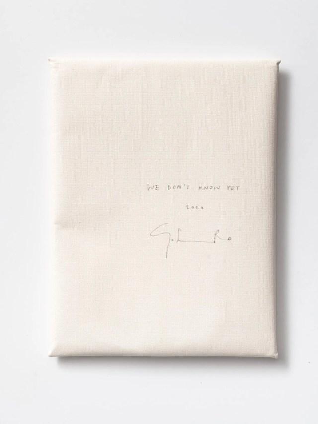 Corinna Gosmaro (chiuso) We don't know yet, 2020 incisione su copertina con punta di bambù Courtesy l'artista e The Gallery Apart, Roma