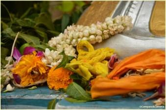 At the foot of Ganesha