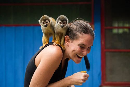 Antie and Monkeys