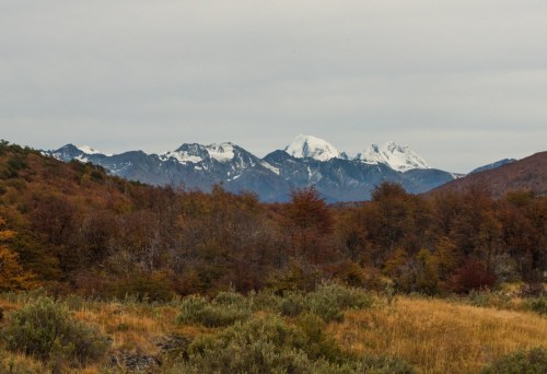 VIew of Ushuaia National Park, including a red, green and orange forest in the foreground and snowcapped mountains in the background