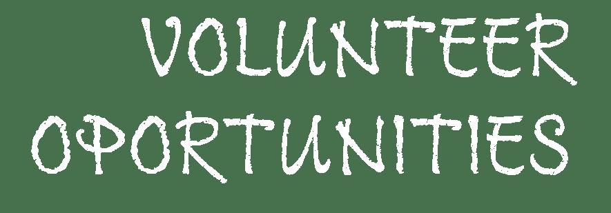 Banner-Volunteer-Text