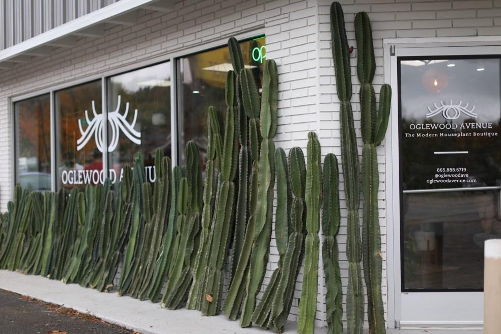 Oglewood Avenue storefront
