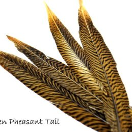 Nature's Spirit Golden Pheasant Side Tails (Select Pair)