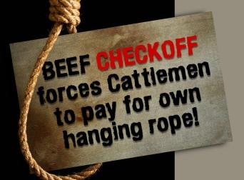 beef-checkoff-hanging-rope-cropped