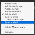 Adobe Lightroom profiles menu