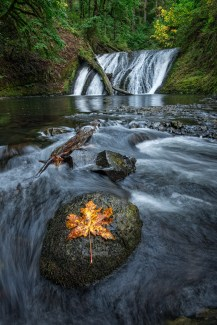Silver Falls ©Hudson Henry Photography