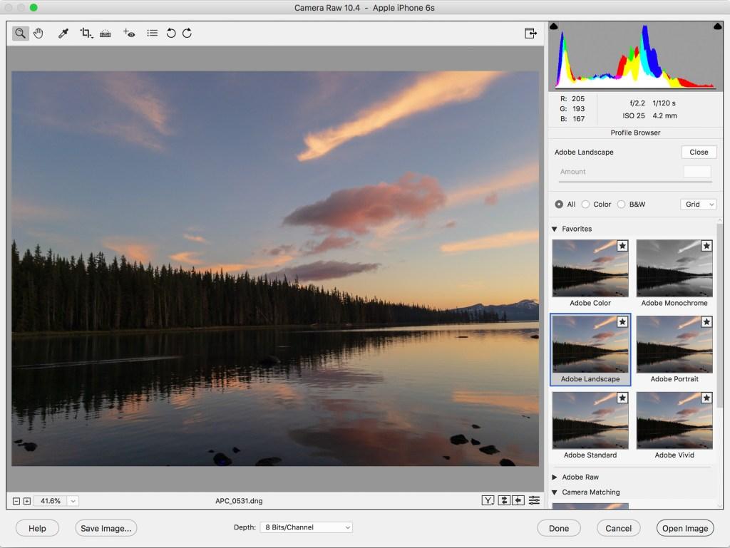 reinstall adobe photoshop elements 10