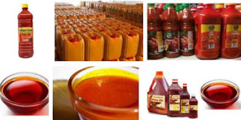 GET A PALM RED OIL, KERNEL OIL PROCESSING BUSINESS PLAN HERE /BUSINESS PLAN & FEASIBILITY STUDY FOR PALM RED OIL AND KERNEL OIL