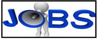 Vodafone Nigeria Fresh Graduate Career Job Recruitment/Telecommunication Career Recruitment @ Vodafone Nigeria