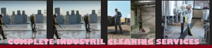 Sample cleaning Services company business plan