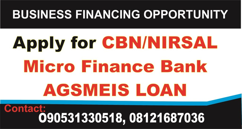 NIRSAL AGSMEIS Financial Model for Rice Mill Business Plan