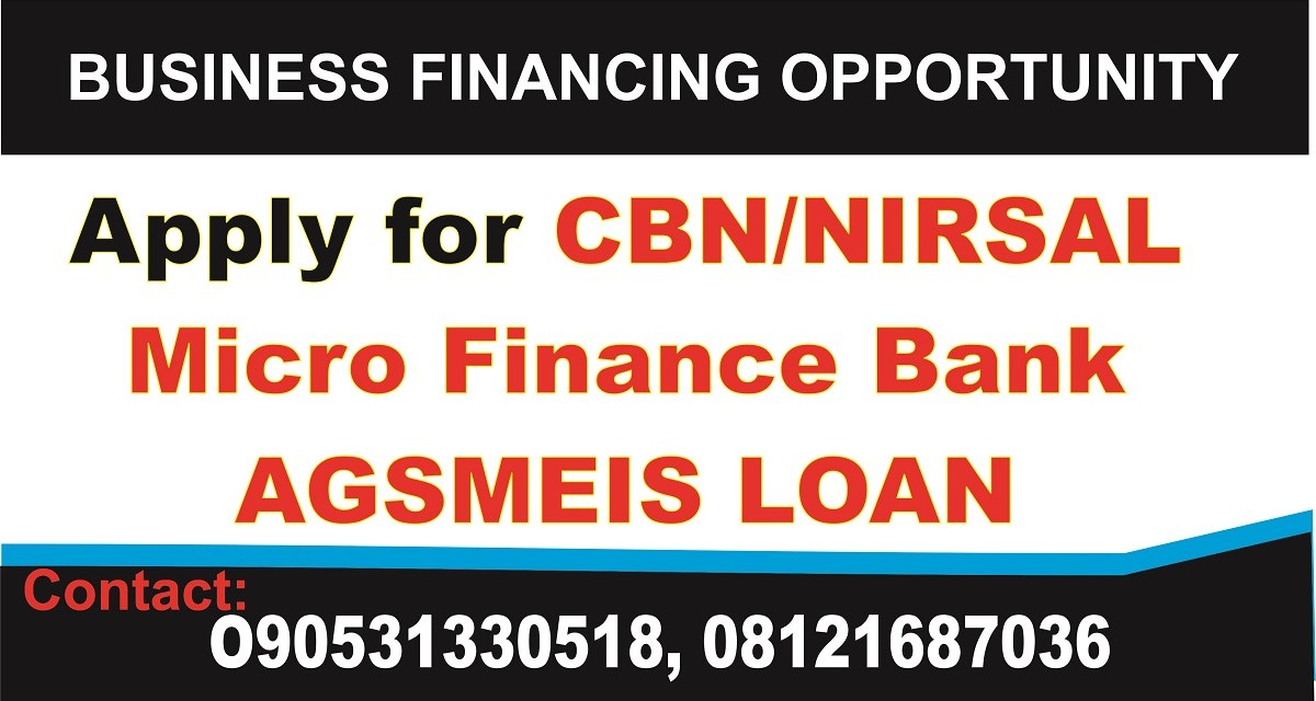 Business Plan Template for NIRSAL Bank Loan Agro Produce