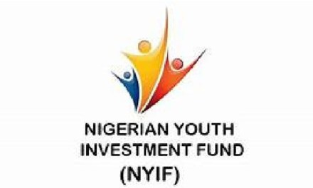 Approved Business Plan Template for Nigeria Youth Investment Fund – NYIF