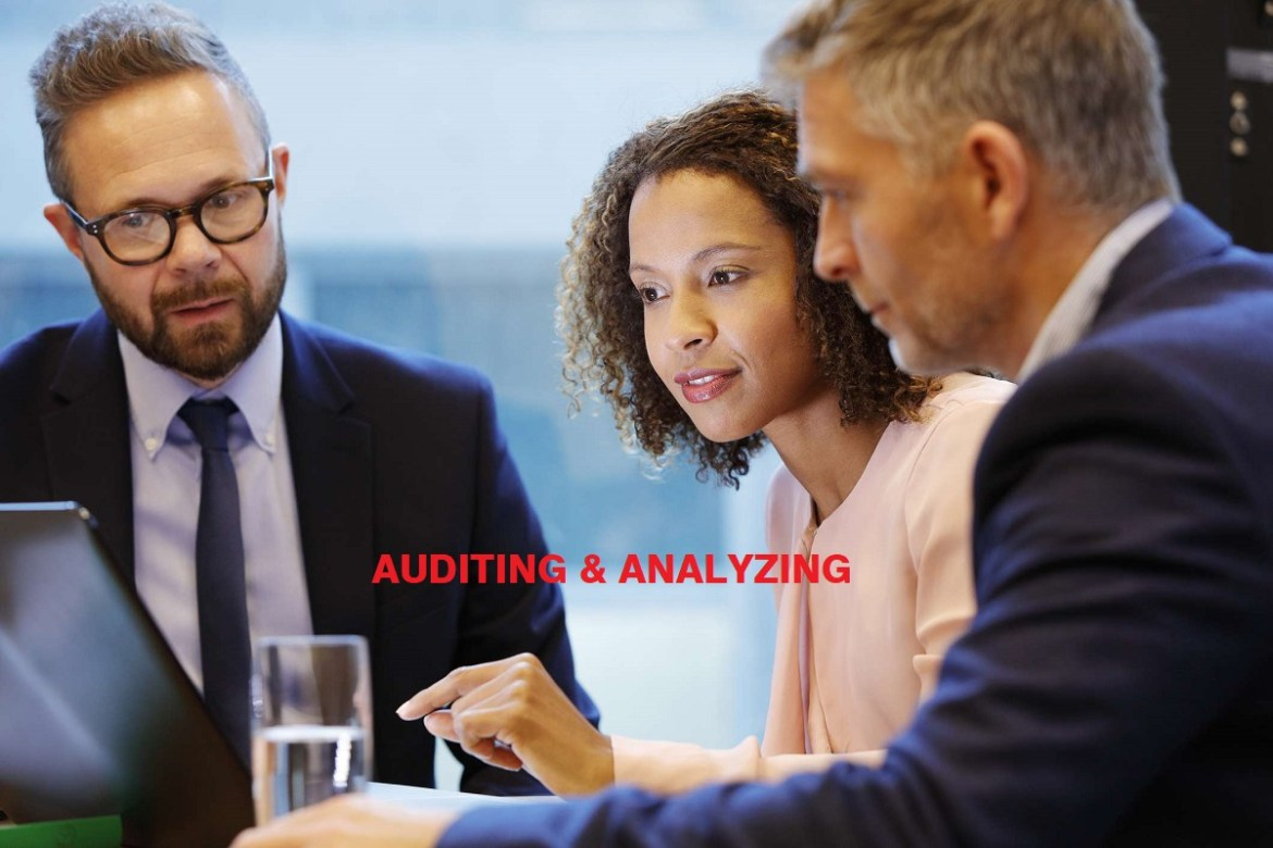 What are the Different types of audit?