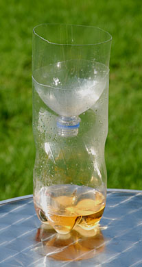 Sweet and sour attractant attracts wasps but not bees