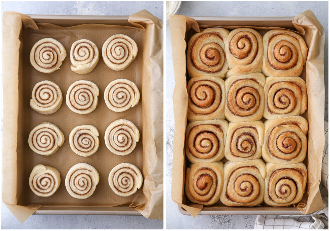 no-knead cinnamon rolls before and after baking
