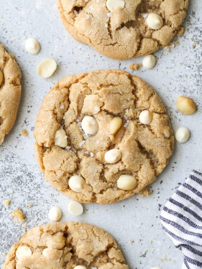 closeup of white chocolate macadamia nut cookies