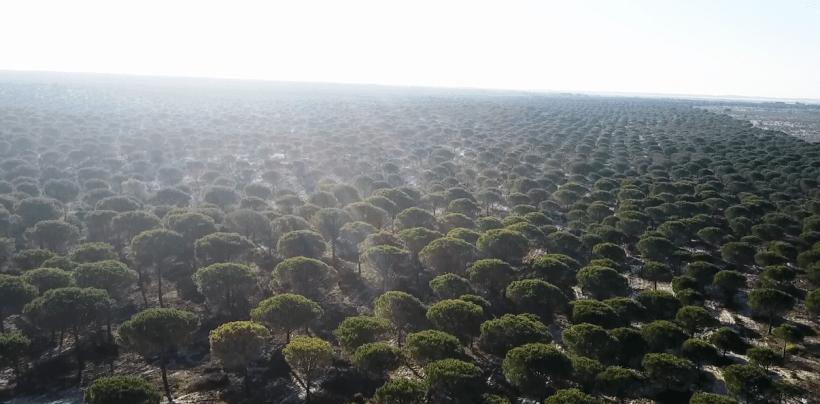 Farming Estates in Comporta