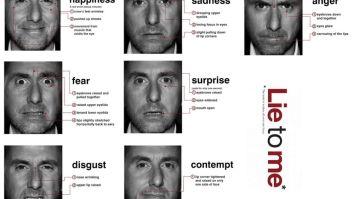 O estudo do comportamento facial humano 7