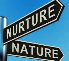 Nature X Nurture: um debate que tende a chegar a seu fim 14