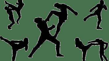 Dica de leitura: Variabilidade de comportamentos nas artes marciais 21