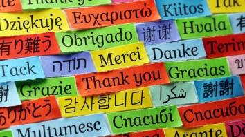 Razões para agradecer: reflexões sobre o sentimento de gratidão 15