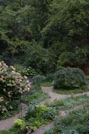 The garden in the woods