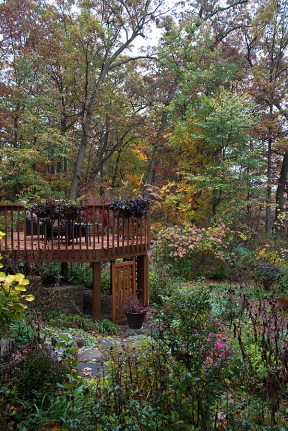 The deck, garden, and woods
