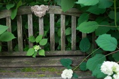 """Flora"" bench embraced by Hydrangea arborescens 'Annabelle'"