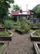The kitchen garden