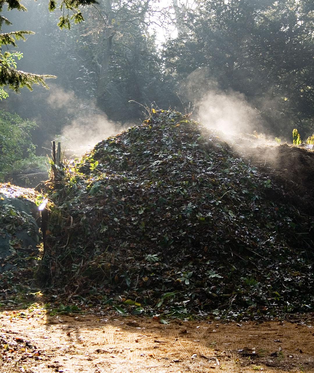 Hot-Compost1
