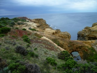 Beautiful colors and textures of plants, soils, sea and sky along the Great Ocean Road.