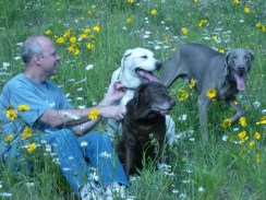 with Dad and two of her best dog friends