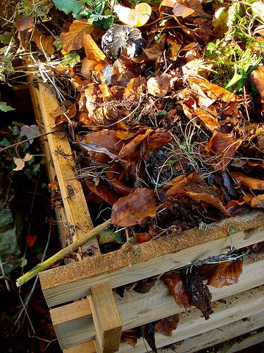 Wood Framed Composter