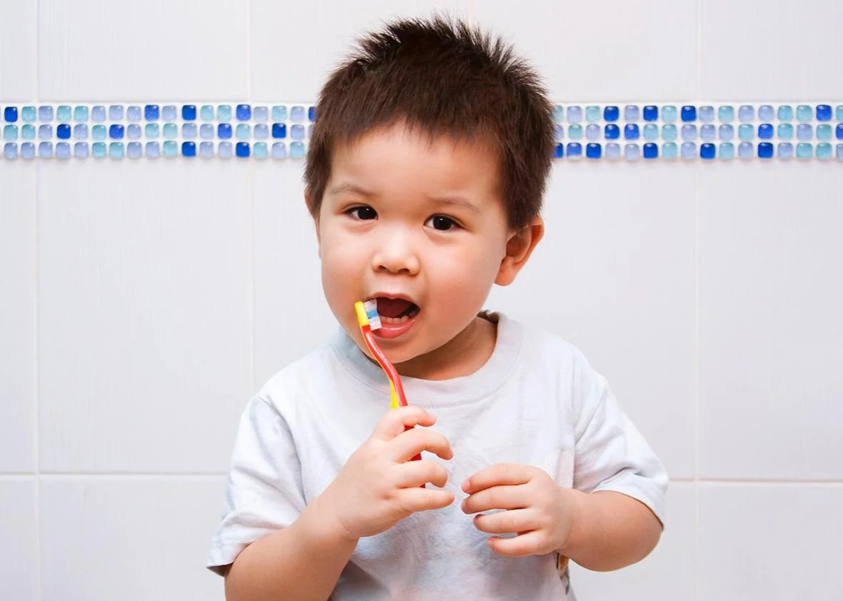 Do Toddlers Need To Go To The Dentist And Brush Their
