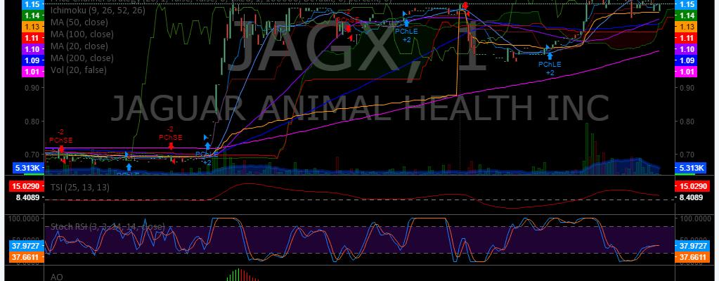 Premarket, Stocks, Trading, Plan, $JAGX