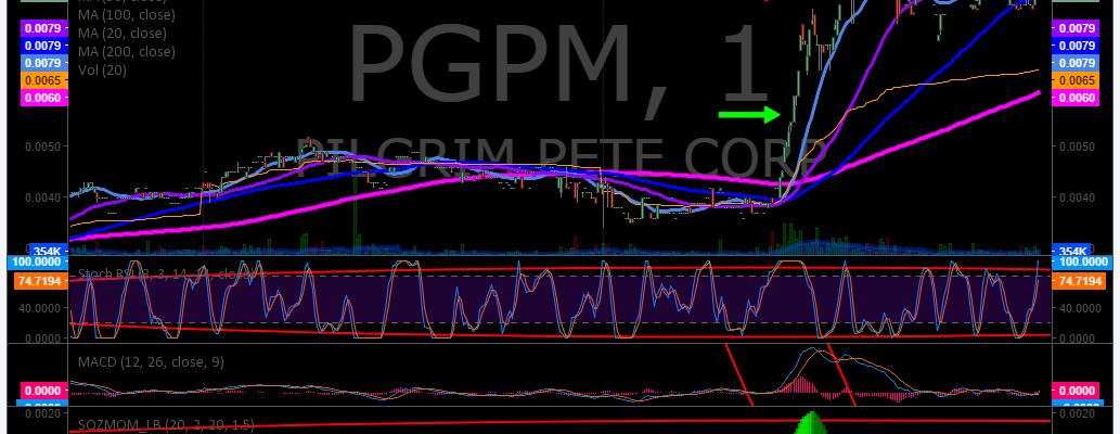 $PGPM, Trading, Results
