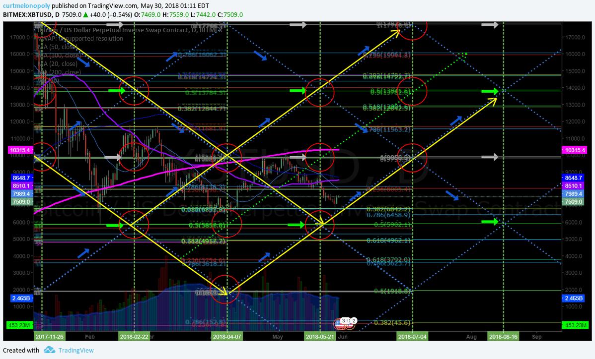 Bitcoin, daily, chart, algorithm