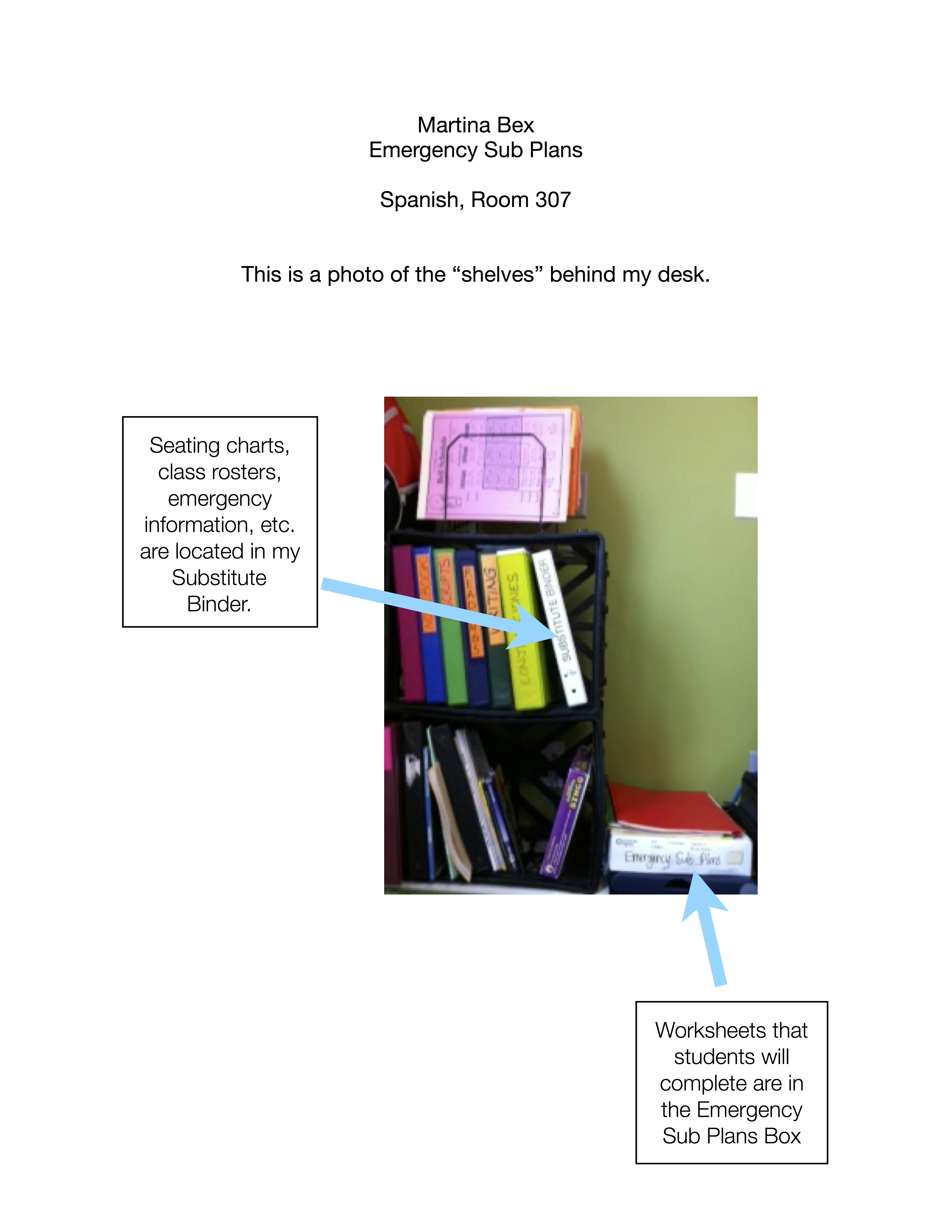 Emergency Sub Plans a la TPRS - The Comprehensible Classroom
