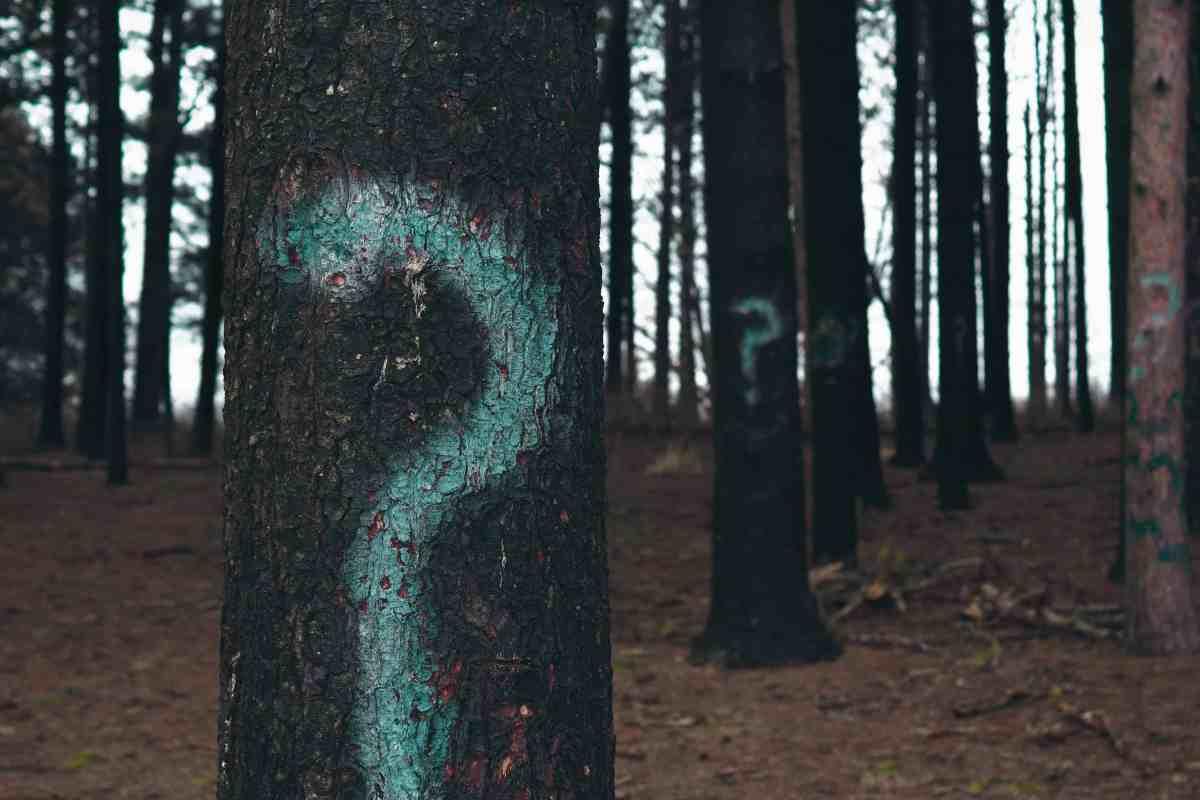 30 questions/réponses sur la sciatique et la cruralgie