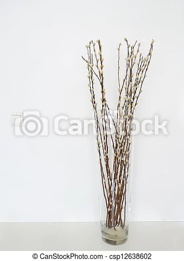 Stock Photography Of Pussy Willows Vase Pussy Willows