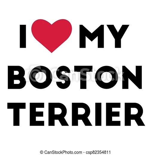 Download I love my boston terrier , illustration on white background.