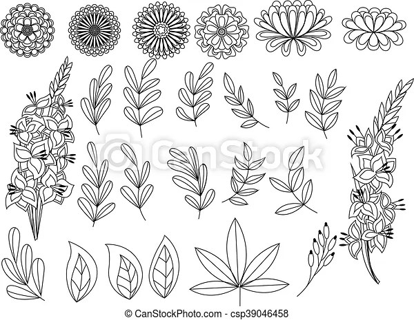 Set Of Outline Autumn Leaves And Flowers Vector Set Of Outline Autumn Leaves And Flowers