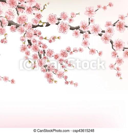 10 Branches Fleur Cerisier Eps 10 Branches Fond Fleur Cerisier Japonaise Eps Arriere Plan Vecteur Sakura Canstock