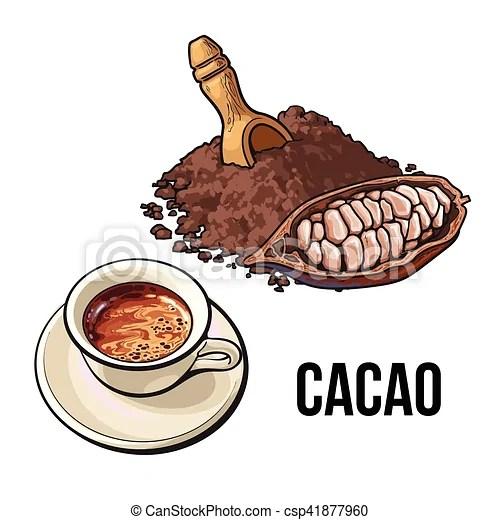 tasse poudre chocolat cacao chaud fruit tas cacao