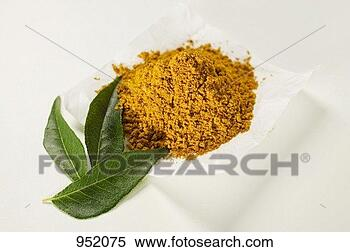 Stock Image - curry powder and  curry leaves.  fotosearch - search  stock photos,  pictures, images,  and photo clipart
